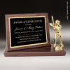 Click this Image to visit the Stand-Up Plaque Trophy Awards category.